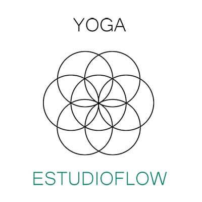 Logotipo EstudioFlow