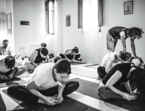 Living Yoga Shala, tu paraíso de Ashtanga yoga.